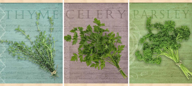 How to PreserveFresh Herbs