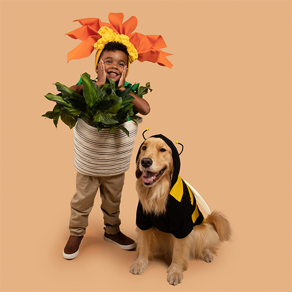 Young boy and dog dressed in DIY flowerpot and bumblebee costumes