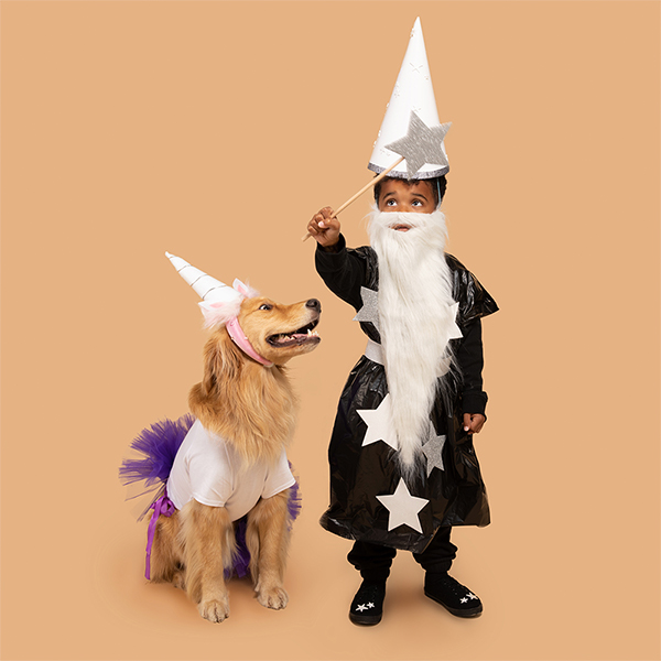 Young boy and dog dressed in DIY wizard and unicorn costumes